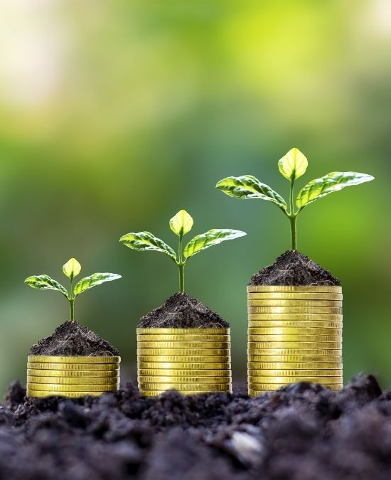 Smart Investments: How To Make Your Money Work for You